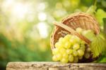 Australia table grapes