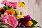 Wholesales Flower Gold Coast